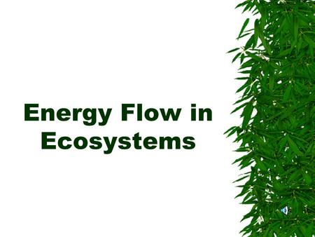 Energy Flow in Ecosystems. Energy AAll living things need energy to grow and to carry out their activities. TThey get this energy from their food.