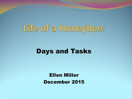 Days and Tasks Ellen Miller December 2015. Goal Gain a better understanding of the different tasks performed by the honeybee at certain stages in its.