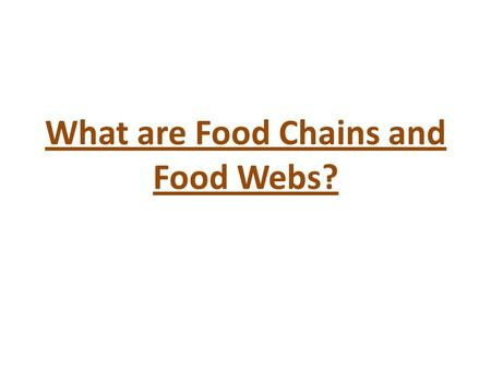 What are Food Chains and Food Webs?. Food Chains Living things need one another to survive. A food chain shows the order in which animals eat plants and.