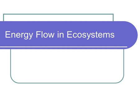 Energy Flow in Ecosystems. Energy Roles 1. Producers – an organism that can make its own food (plants) 2. Consumers – organism that gains energy by.
