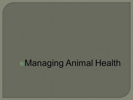  Managing Animal Health.  SL.11 ‐ 12.5 Make strategic use of digital media (e.g., textual, graphical, audio, visual, and interactive elements) in presentations.