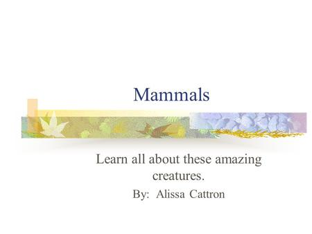 Mammals Learn all about these amazing creatures. By: Alissa Cattron.