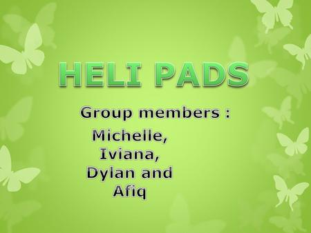 HELI PADS Group members : Michelle, Iviana, Dylan and Afiq.
