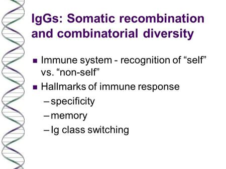 "IgGs: Somatic recombination and combinatorial diversity n Immune system - recognition of ""self"" vs. ""non-self"" n Hallmarks of immune response –specificity."