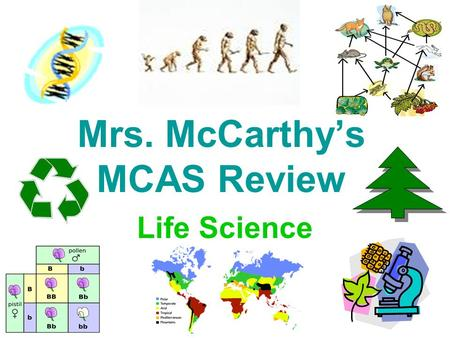 Mrs. McCarthy's MCAS Review Life Science. 6 th Grade Curriculum –Classification of Organisms –Structure and Function of Cells –Systems in Living Things.