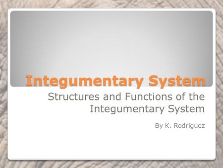 Integumentary System Structures and Functions of the Integumentary System By K. Rodriguez.