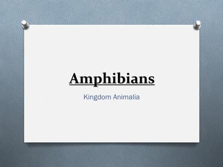 Amphibians Kingdom Animalia Evolution O Approximately 345 million years ago. O Evolved from lobe-finned fish.