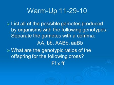 Warm-Up 11-29-10   List all of the possible gametes produced by organisms with the following genotypes. Separate the gametes with a comma: AA, bb, AABb,