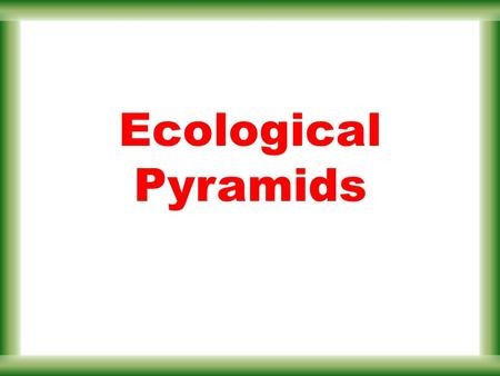 Ecological Pyramids. Instead of representing trophic levels in a food web, an ecological pyramid can be used. Grass (10,000 kcal) Grasshopper (1,000 kcal)