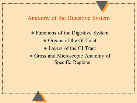 Anatomy of the Digestive System u Functions of the Digestive System u Organs of the GI Tract u Layers of the GI Tract u Gross and Microscopic Anatomy of.