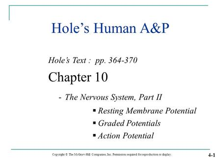 Hole's Human A&P Hole's Text : pp. 364-370 Chapter 10 - The Nervous System, Part II  Resting Membrane Potential  Graded Potentials  Action Potential.