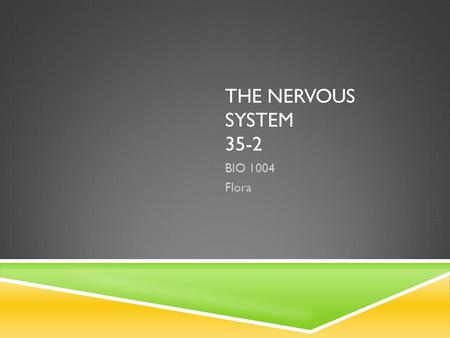 THE NERVOUS SYSTEM 35-2 BIO 1004 Flora. NERVOUS SYSTEM  Nervous system – controls and coordinates functions throughout the body and responds to internal.