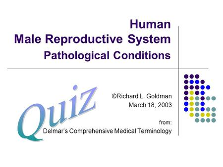Human Male Reproductive System Pathological Conditions ©Richard L. Goldman March 18, 2003 from: Delmar's Comprehensive Medical Terminology.