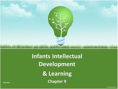 Infants Intellectual Development & Learning Chapter 9 01/2014.