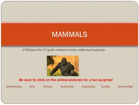 MAMMALS A WebQuest for 2 nd grade students to better understand mammals IntroductionIntroduction Task Process Evaluation Conclusion Credits Teacher PageTask.