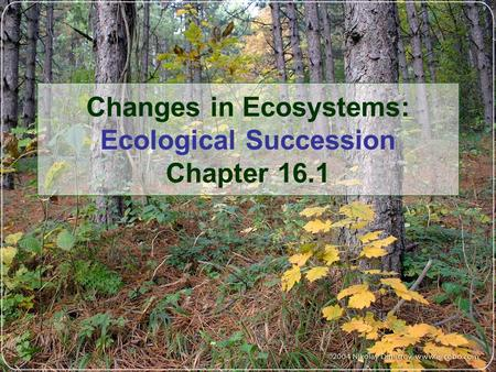 Changes in Ecosystems: Ecological Succession Chapter 16.1.