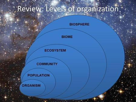 Review: Levels of organization ORGANISM POPULATION COMMUNITY ECOSYSTEM BIOME BIOSPHERE.