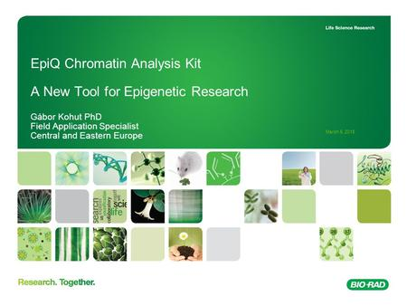 March 6, 2016 EpiQ Chromatin Analysis Kit A New Tool for Epigenetic Research Gábor Kohut PhD Field Application Specialist Central and Eastern Europe.