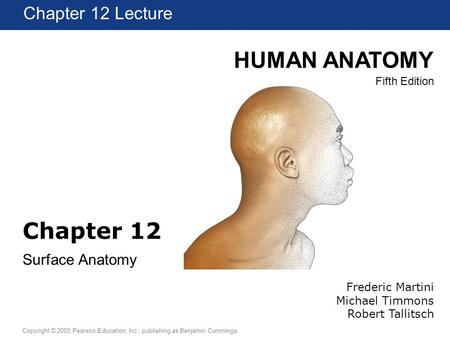 HUMAN ANATOMY Fifth Edition Chapter 1 Lecture Copyright © 2005 Pearson Education, Inc., publishing as Benjamin Cummings Chapter 12 Lecture Chapter 12 Surface.