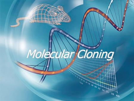 Molecular Cloning. Definitions   Cloning :   Obtaining a piece of DNA from its original source (Genome) and introducing it in a DNA vector   Sub-cloning: