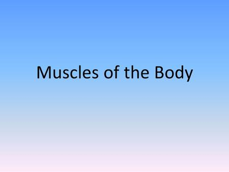 Muscles of the Body. Voluntary Muscles Muscles that we can control Skeletal Muscles (like…)