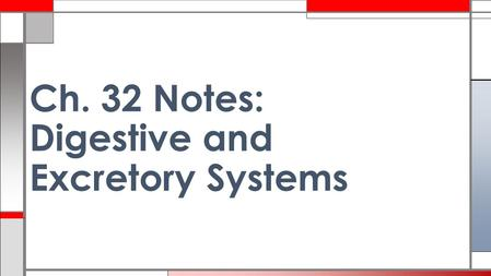 Ch. 32 Notes: Digestive and Excretory Systems. mouth esophagus liver gallbladder large intestine small intestine rectum/anus.