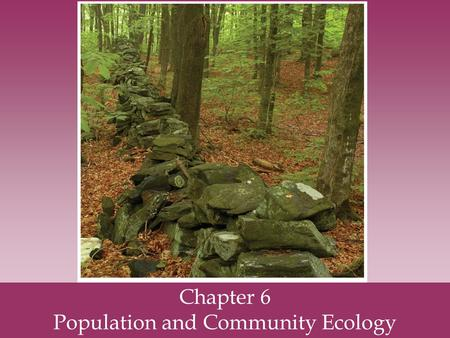 Chapter 6 Population and Community Ecology. Nature exists at several levels of complexity.