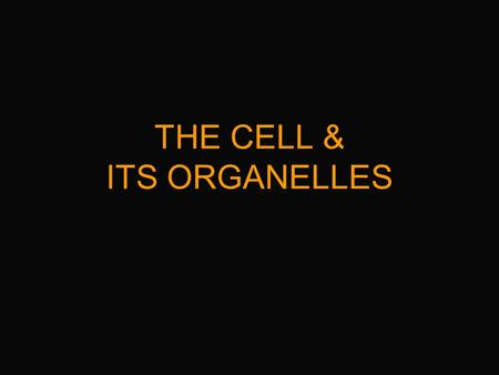 THE CELL & ITS ORGANELLES So what is a Cell? A place where chemical reactions occur.