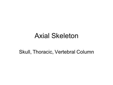 Axial Skeleton Skull, Thoracic, Vertebral Column.