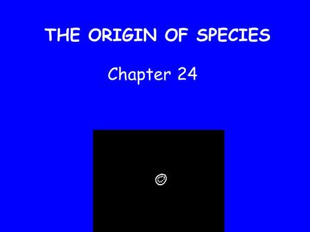 THE ORIGIN OF SPECIES Chapter 24 Origin of Species Macroevolution – the origin of new taxonomic groups Speciation – the origin of new species.