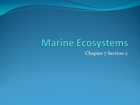 Chapter 7 Section 2. Estuaries Estuary – an area in which fresh water from a river mixes with salt water from the ocean Nutrients and minerals fall to.