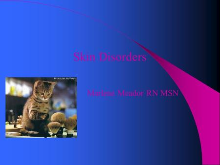 Skin Disorders Marlene Meador RN MSN. Compare skin differences Infant: skin not mature at birth Adolescence: sebaceous glands become enlarged & active.
