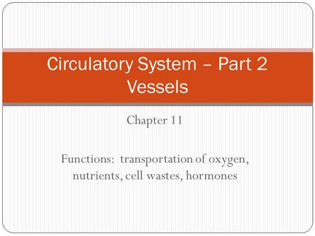 Chapter 11 Functions: transportation of oxygen, nutrients, cell wastes, hormones Circulatory System – Part 2 Vessels.