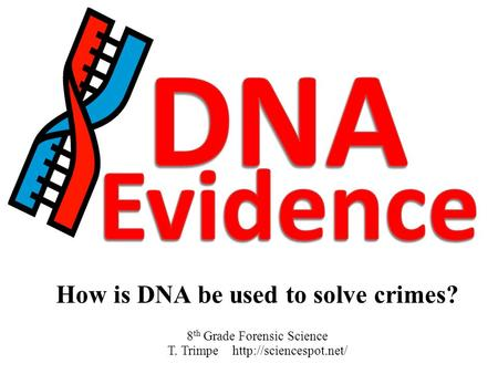 How is DNA be used to solve crimes? 8 th Grade Forensic Science T. Trimpe