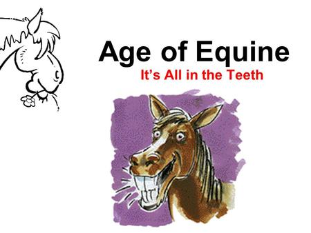 Age of Equine It's All in the Teeth. Determining Age Age affects usefulness and value Type, number and appearance of incisor teeth help determine correct.