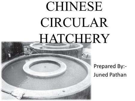 CHINESE CIRCULAR HATCHERY