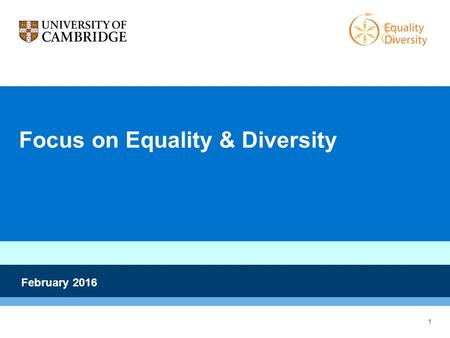 1 Focus on Equality & Diversity February 2016. 2 Overview Dr Nick Bampos, Disability Equality and LGBT Staff Network Champion Professor Judith Lieu, Gender.