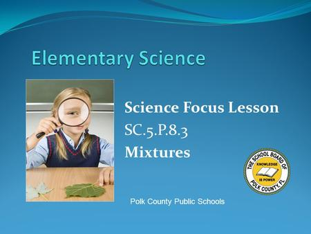 Science Focus Lesson SC.5.P.8.3 Mixtures Polk County Public Schools.