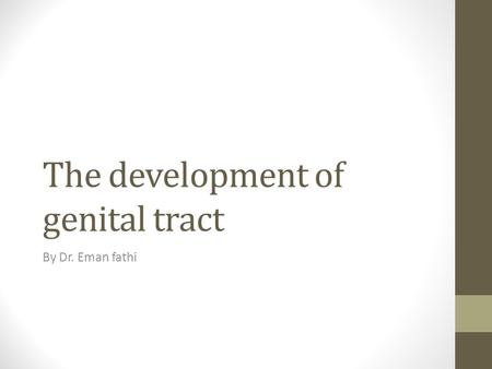 The development of genital tract