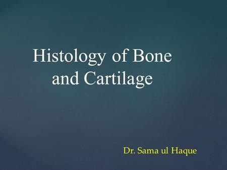 Histology of Bone and Cartilage Dr. Sama ul Haque.