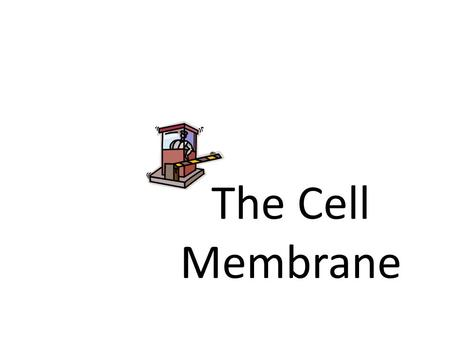The Cell Membrane. What is the cell membrane? AKA: Plasma membrane The boundary between the cell and the environment Does every cell have a cell membrane?
