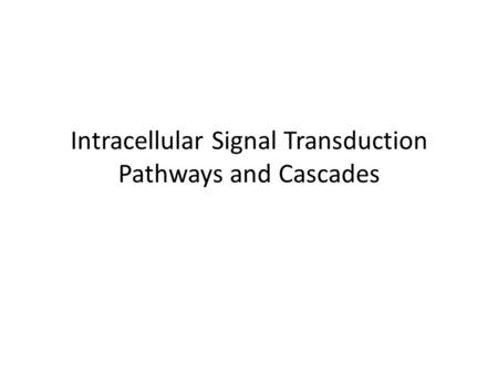 Intracellular Signal Transduction Pathways and Cascades.