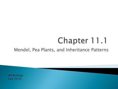 Mendel, Pea Plants, and Inheritance Patterns AP Biology Fall 2010.