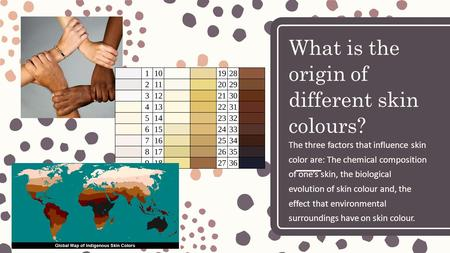What is the origin of different skin colours? The three factors that influence skin color are: The chemical composition of one's skin, the biological evolution.