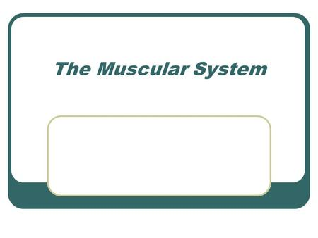 The Muscular System. Review of Muscle Types Characteristics Excitability Contractibility Extensibility Elasticity.