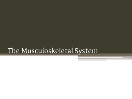 The Musculoskeletal System. Link with the Nervous System The nervous system controls and coordinates movements within our bodies. It collects sensory.