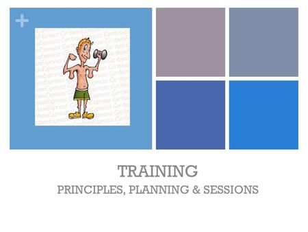 + TRAINING PRINCIPLES, PLANNING & SESSIONS. + TRAINING PRINCIPLES CAREFUL CONSIDERATION IS PUT INTO DESIGNING A TRAINING PROGRAM TO ENSURE THERE IS RELEVANCE,