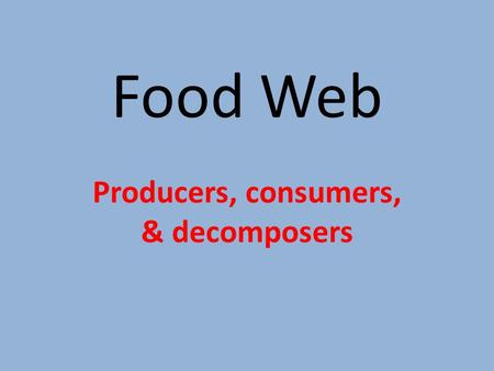 Food Web Producers, consumers, & decomposers. Three main components to the food web Producers Consumers Decomposers.
