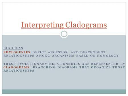 Interpreting Cladograms