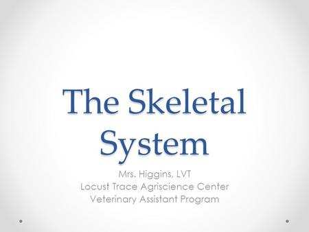 The Skeletal System Mrs. Higgins, LVT Locust Trace Agriscience Center Veterinary Assistant Program.